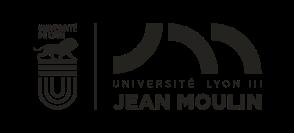 UDL-Lyon3_WEB.png